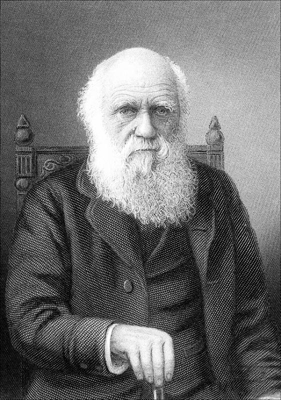 The long dark цитата Чарльза Дарвина