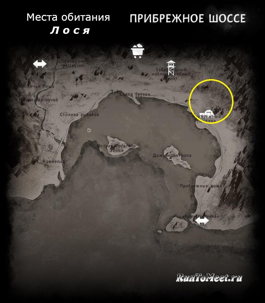 Места обитания лося, на карте локации Прибрежное шоссе, в игре The long dark