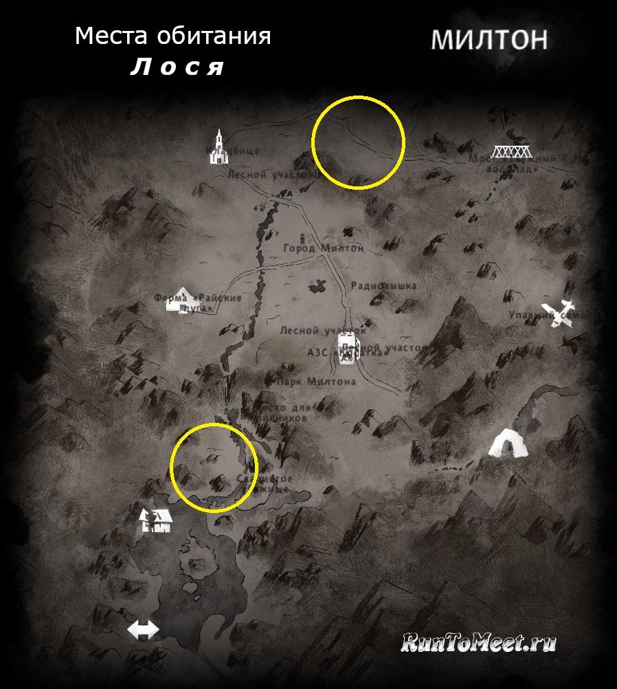 Места обитания лося, на карте локации Милтон, в игре The long dark