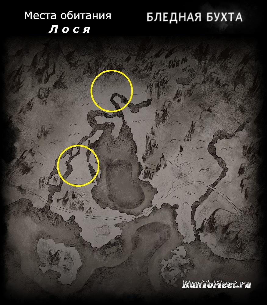 Места обитания лося, на карте локации Бледная бухта, в игре The long dark